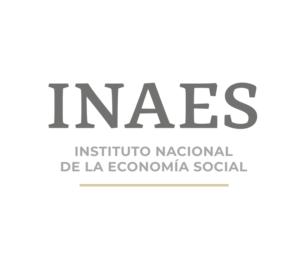 Firma Bienestar-INAES compuesta e individual (1)